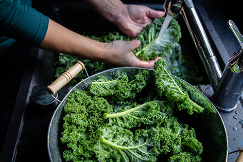 Woman washing kale to remove pesticide residue