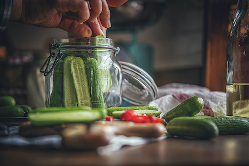 Lacto-fermented pickles are rich in probiotics