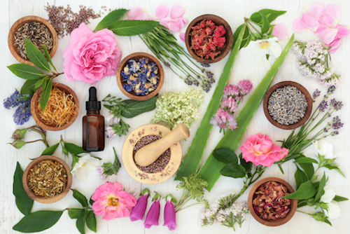 Exploring different herbs that are effective for natural menopause relief