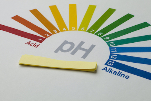 pH strips and level.