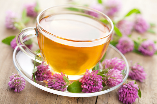 Red clover is one of the best natural supplements for menopause symptoms
